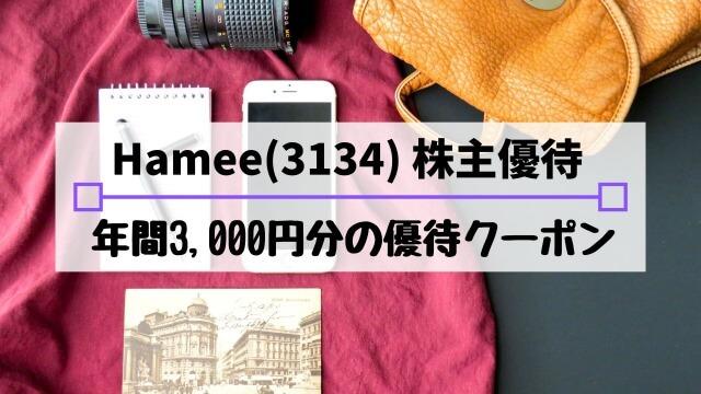 Hamee(3134)の株主優待は?配当金や優待利回り、到着時期など解説